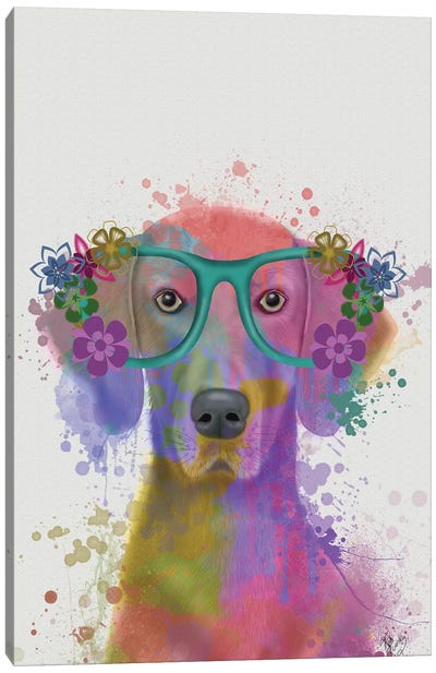 Rainbow Splash Weimaraner, Portrait Canvas Art Print