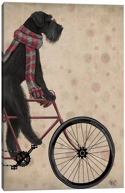 Schnauzer on Bicycle, Black Canvas Art Print