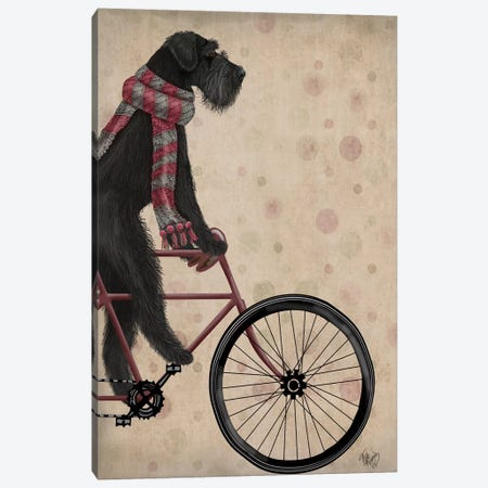Schnauzer on Bicycle, Black Canvas Print #FNK823} by Fab Funky Canvas Artwork