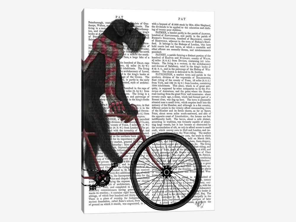 Schnauzer on Bicycle, Black, Print BG by Fab Funky 1-piece Art Print