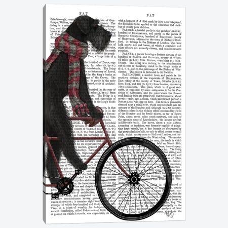 Schnauzer on Bicycle, Black, Print BG Canvas Print #FNK824} by Fab Funky Art Print