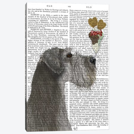 Schnauzer, Grey, Ice Cream, Print BG Canvas Print #FNK832} by Fab Funky Art Print