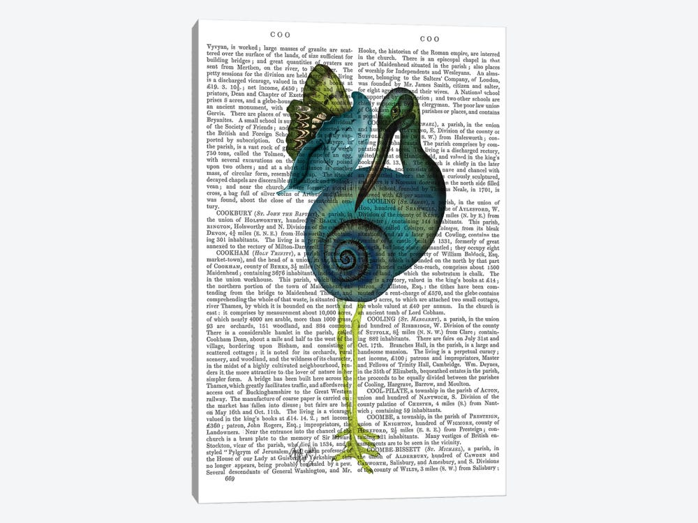 Snail Bird by Fab Funky 1-piece Canvas Art Print