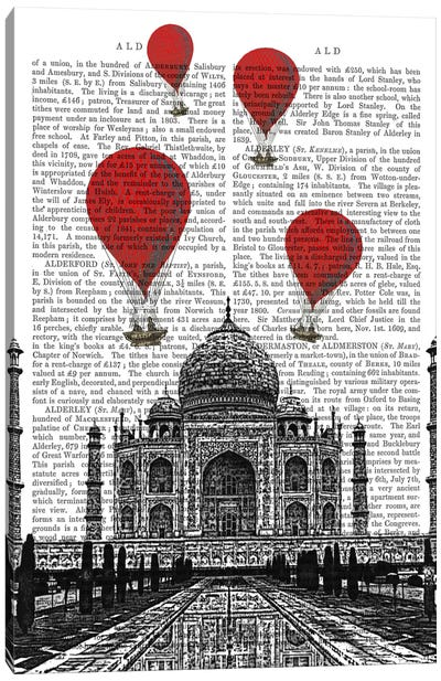 Red Hot Air Balloons Series: Taj Mahal Canvas Print #FNK83