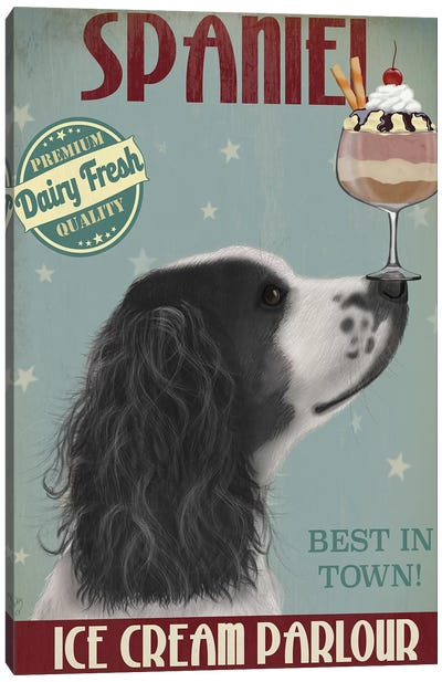 Springer Spaniel, Black and White, Ice Cream Canvas Art Print