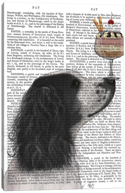 Springer Spaniel, Black and White, Ice Cream, Print BG Canvas Art Print
