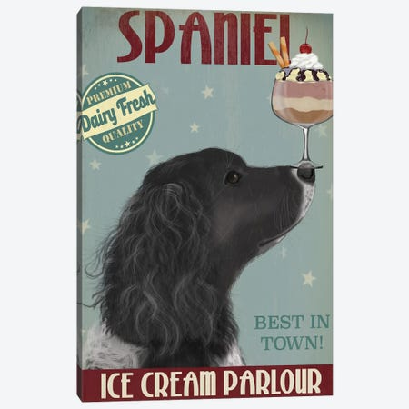 Springer Spaniel, Black, Bebe, Ice Cream Canvas Print #FNK843} by Fab Funky Canvas Artwork