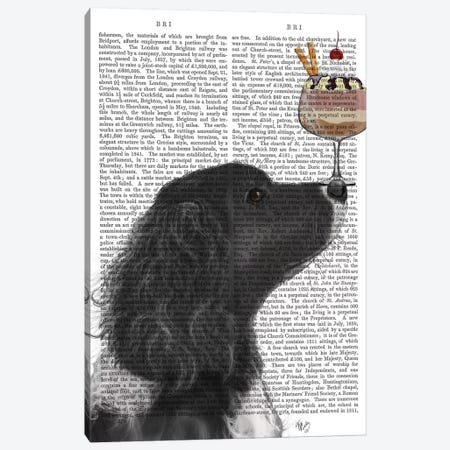 Springer Spaniel, Black, Bebe, Ice Cream, Print BG Canvas Print #FNK844} by Fab Funky Art Print