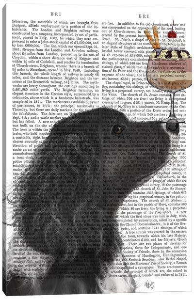 Springer Spaniel, Black, Bebe, Ice Cream, Print BG Canvas Art Print