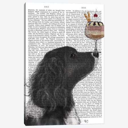 Springer Spaniel, Black, Bebe, Ice Cream, Print BG Canvas Print #FNK844} by Fab Funky Art Print