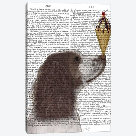 Springer Spaniel, Brown and White, Ice Cream, Print BG Canvas Print #FNK846} by Fab Funky Canvas Art Print