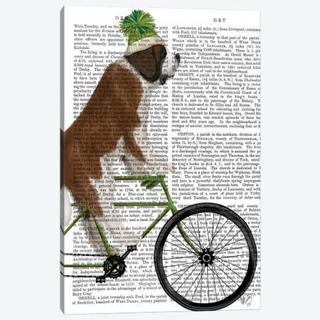 St. Bernard on Bicycle, Print BG Canvas Print #FNK851} by Fab Funky Canvas Print