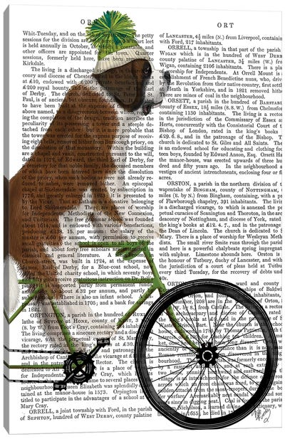 St. Bernard on Bicycle, Print BG Canvas Art Print