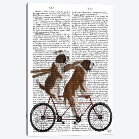 St. Bernard Tandem, Print BG Canvas Print #FNK852} by Fab Funky Canvas Art Print