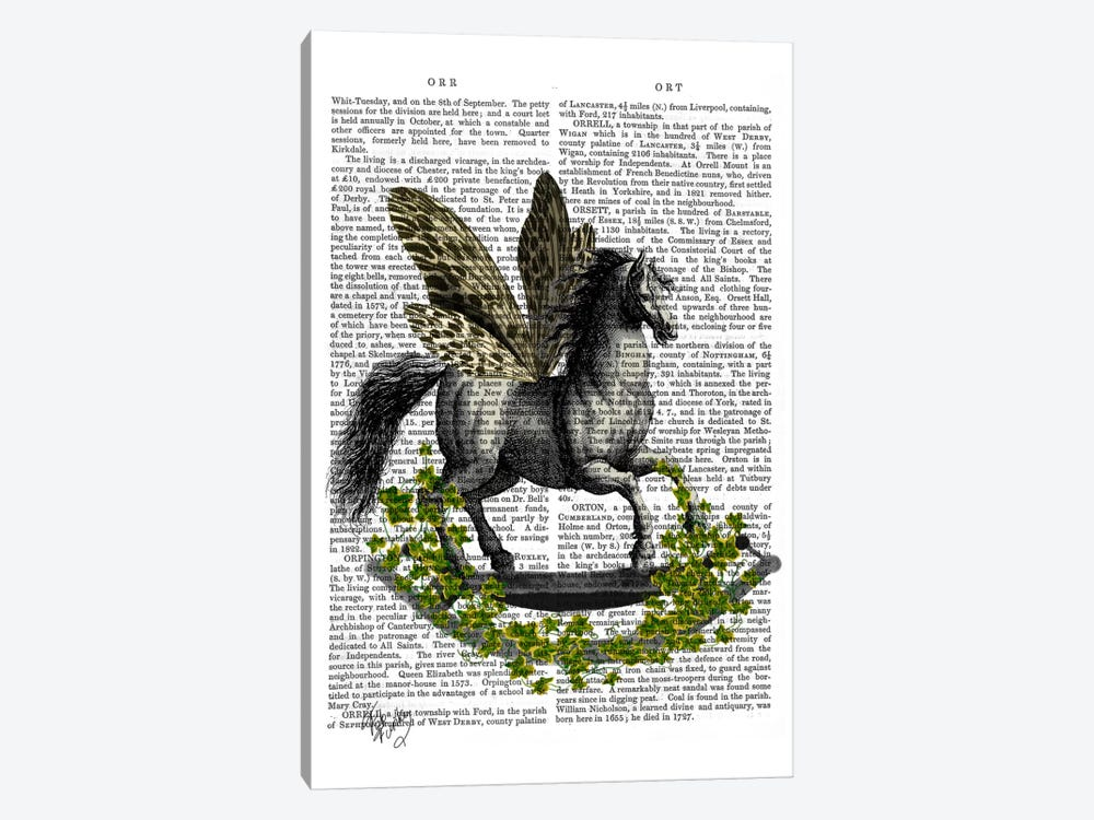 Rocking Horse Fly by Fab Funky 1-piece Canvas Art Print