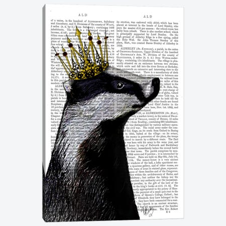 Badger King, Print BG Canvas Print #FNK886} by Fab Funky Canvas Art Print