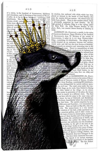 Badger King, Print BG Canvas Art Print