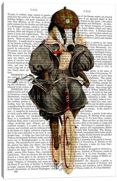 Badger On Vintage Bicycle Canvas Art Print
