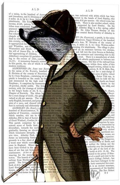 Badger The Rider Portrait Canvas Art Print