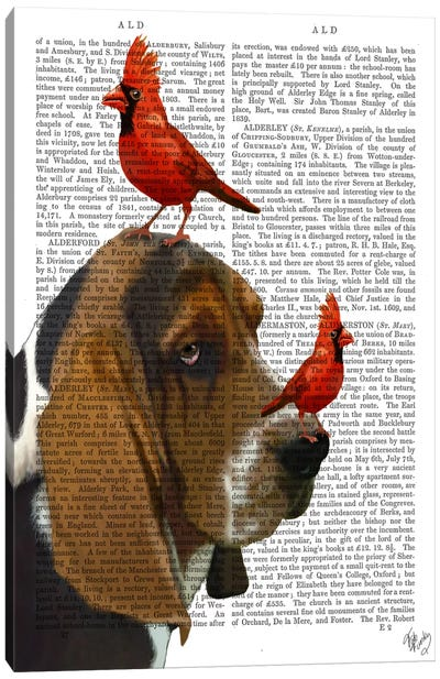 Basset Hound & Birds, Print BG Canvas Art Print
