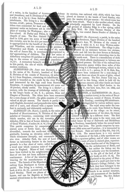 Skeleton On Unicycle Canvas Art Print