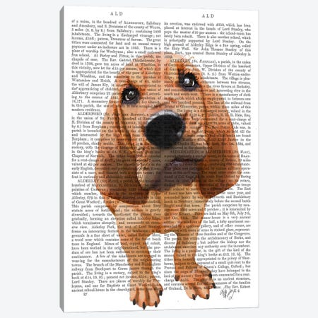 Bloodhound Puppy Canvas Print #FNK912} by Fab Funky Canvas Artwork
