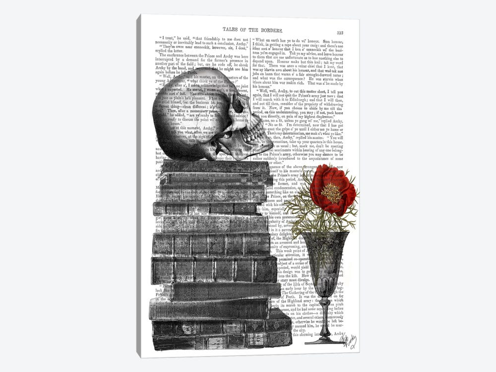 Skull And Books by Fab Funky 1-piece Canvas Wall Art