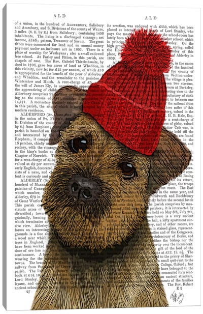 Border Terrier With Red Bobble Hat Canvas Art Print