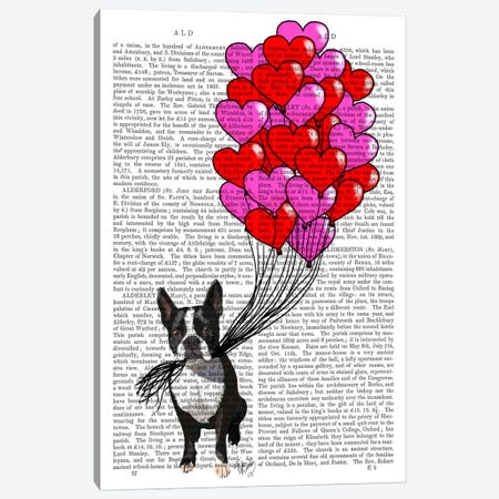 Boston Terrier & Balloons Canvas Print #FNK930} by Fab Funky Canvas Artwork