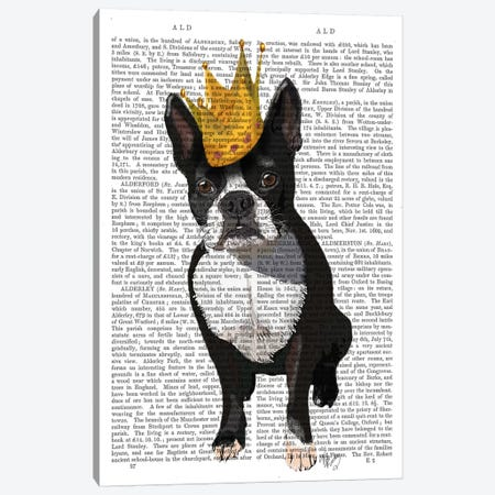 Boston Terrier & Crown, Print BG Canvas Print #FNK932} by Fab Funky Canvas Art