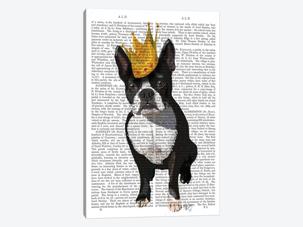 Boston Terrier & Crown, Print BG by Fab Funky 1-piece Canvas Art Print
