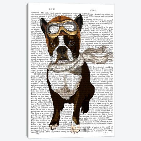Boston Terrier Flying Ace Canvas Print #FNK933} by Fab Funky Canvas Wall Art