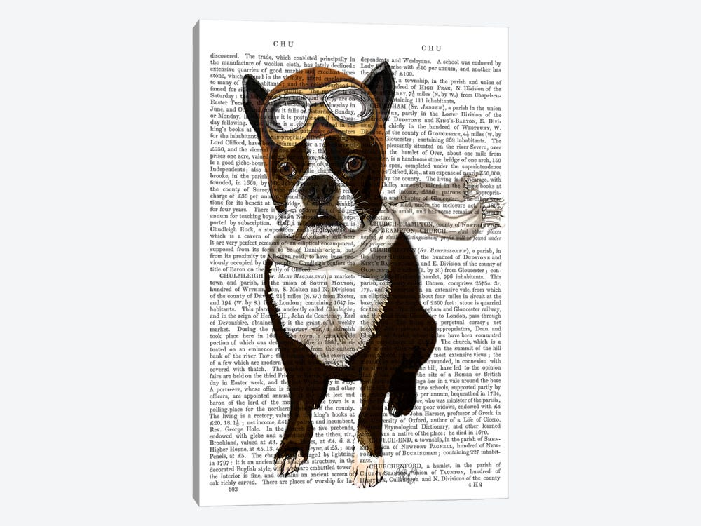 Boston Terrier Flying Ace by Fab Funky 1-piece Canvas Art