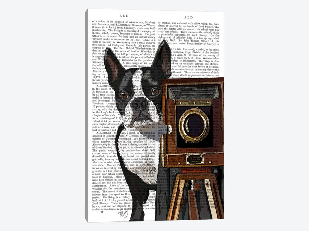 Boston Terrier Photographer by Fab Funky 1-piece Canvas Wall Art