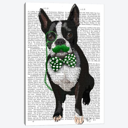 Boston Terrier With Green Moustache & Spotty Green Bow Tie Canvas Print #FNK938} by Fab Funky Canvas Wall Art