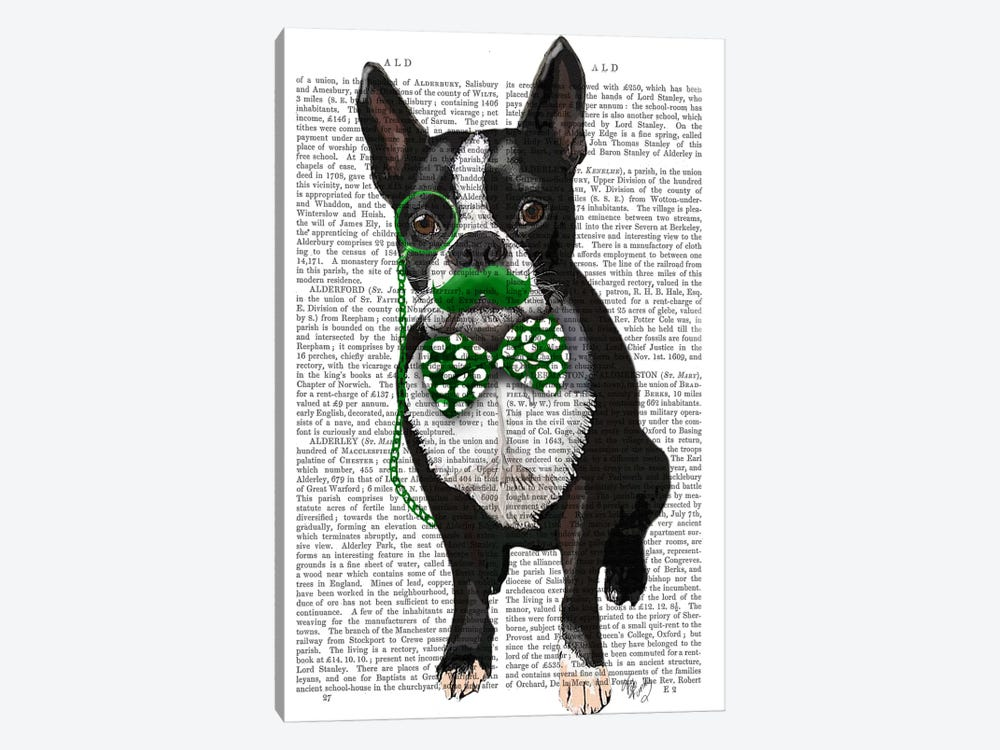 Boston Terrier With Green Moustache & Spotty Green Bow Tie by Fab Funky 1-piece Canvas Art Print