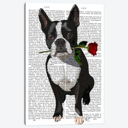 Boston Terrier With Rose In Mouth Canvas Print #FNK939} by Fab Funky Canvas Art