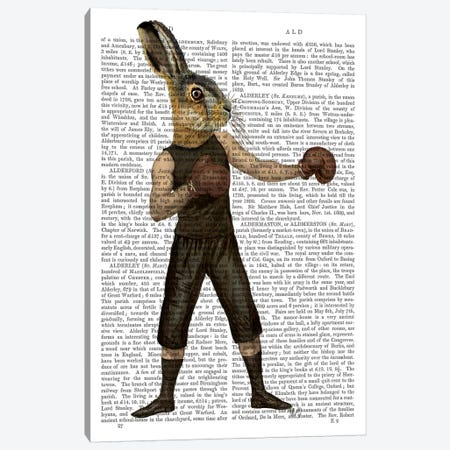 Boxing Hare Canvas Print #FNK942} by Fab Funky Art Print