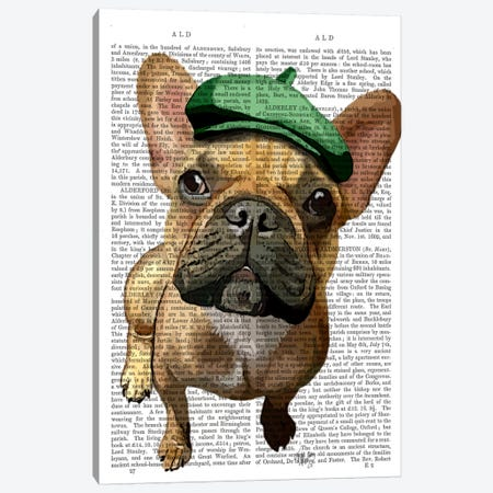 Brown French Bulldog With Green Hat II Canvas Print #FNK946} by Fab Funky Canvas Wall Art
