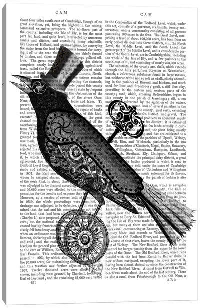 Steampunk Crow Canvas Print #FNK94
