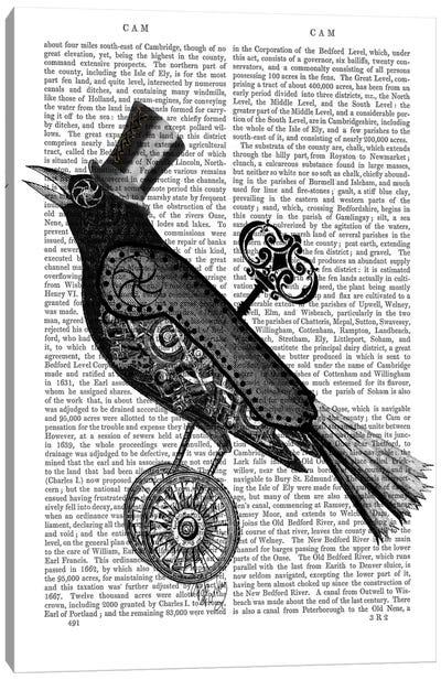 Steampunk Crow Canvas Art Print