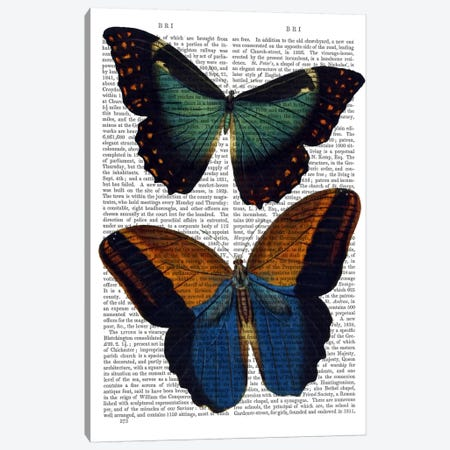 Butterflies II Canvas Print #FNK951} by Fab Funky Canvas Wall Art
