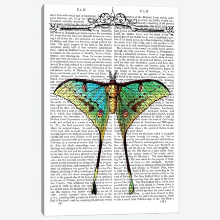 Butterfly On Print BG Canvas Print #FNK956} by Fab Funky Canvas Print