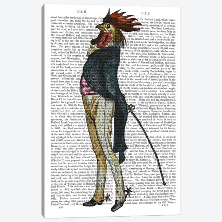 Cockerel With Spurs Canvas Print #FNK969} by Fab Funky Canvas Art Print