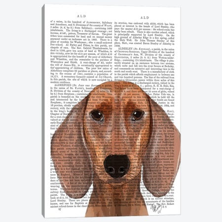 Dachshund Illustration Plain Canvas Print #FNK978} by Fab Funky Canvas Art