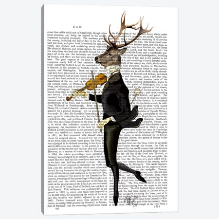 Dancing Deer With Violin Canvas Print #FNK989} by Fab Funky Canvas Art Print