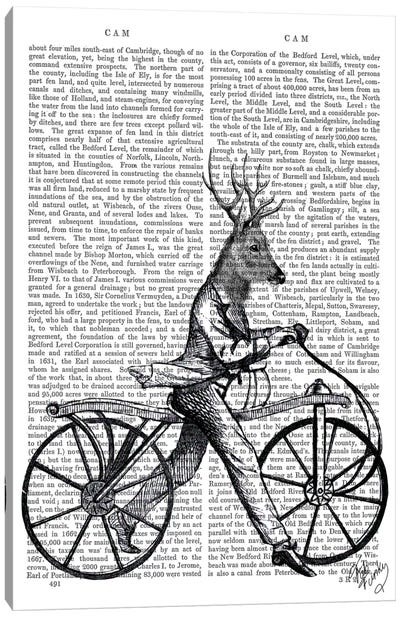 Dandy Deer On Vintage Bicycle Canvas Art Print