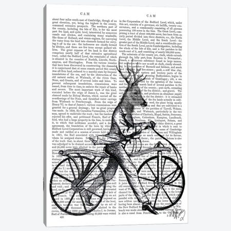 Dandy Deer On Vintage Bicycle Canvas Print #FNK990} by Fab Funky Canvas Art
