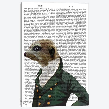 Dandy Meerkat Portrait Canvas Print #FNK993} by Fab Funky Canvas Art