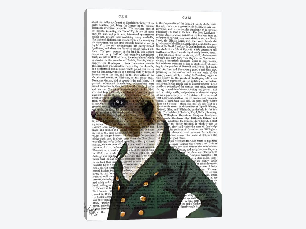 Dandy Meerkat Portrait by Fab Funky 1-piece Canvas Artwork